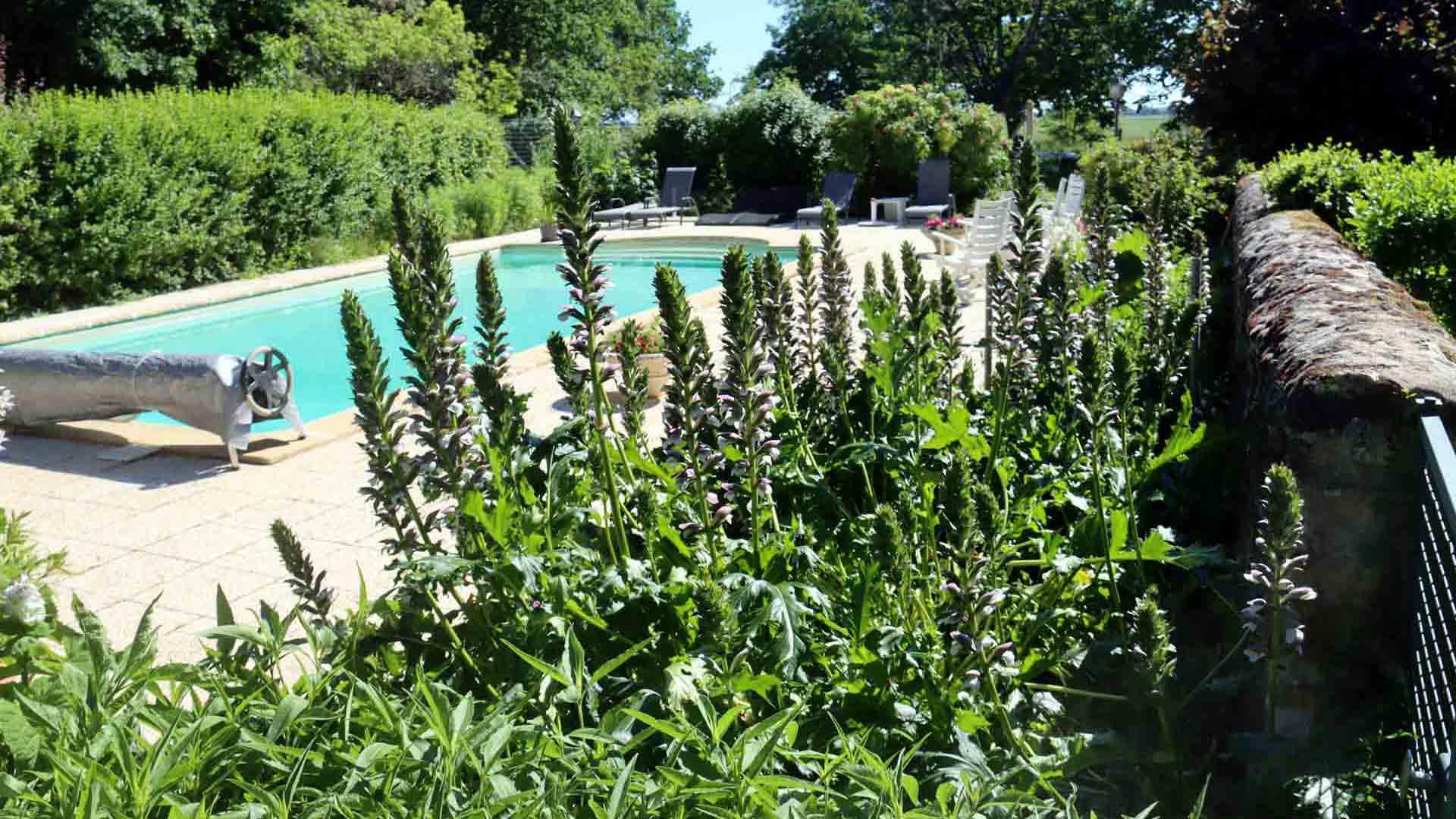 piscine fleurit en Touraine chambre d'hôtes